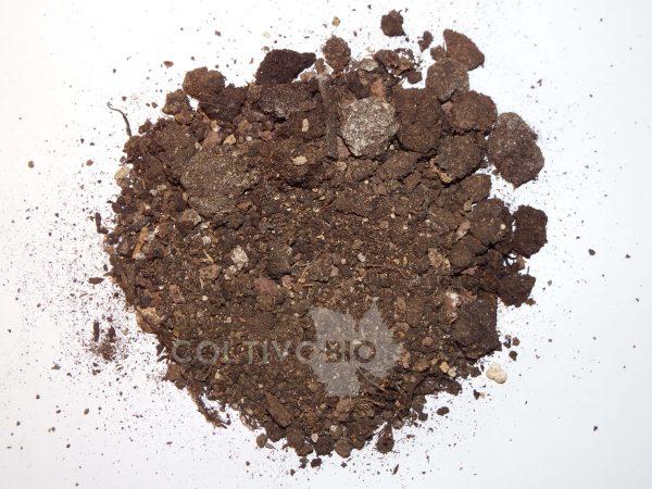 foto del compost